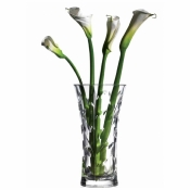 RCR Laurus Vase H 250 mm Set 1 Pcs